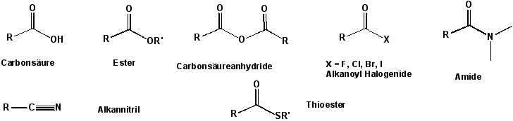 alkaloidy steroidowe