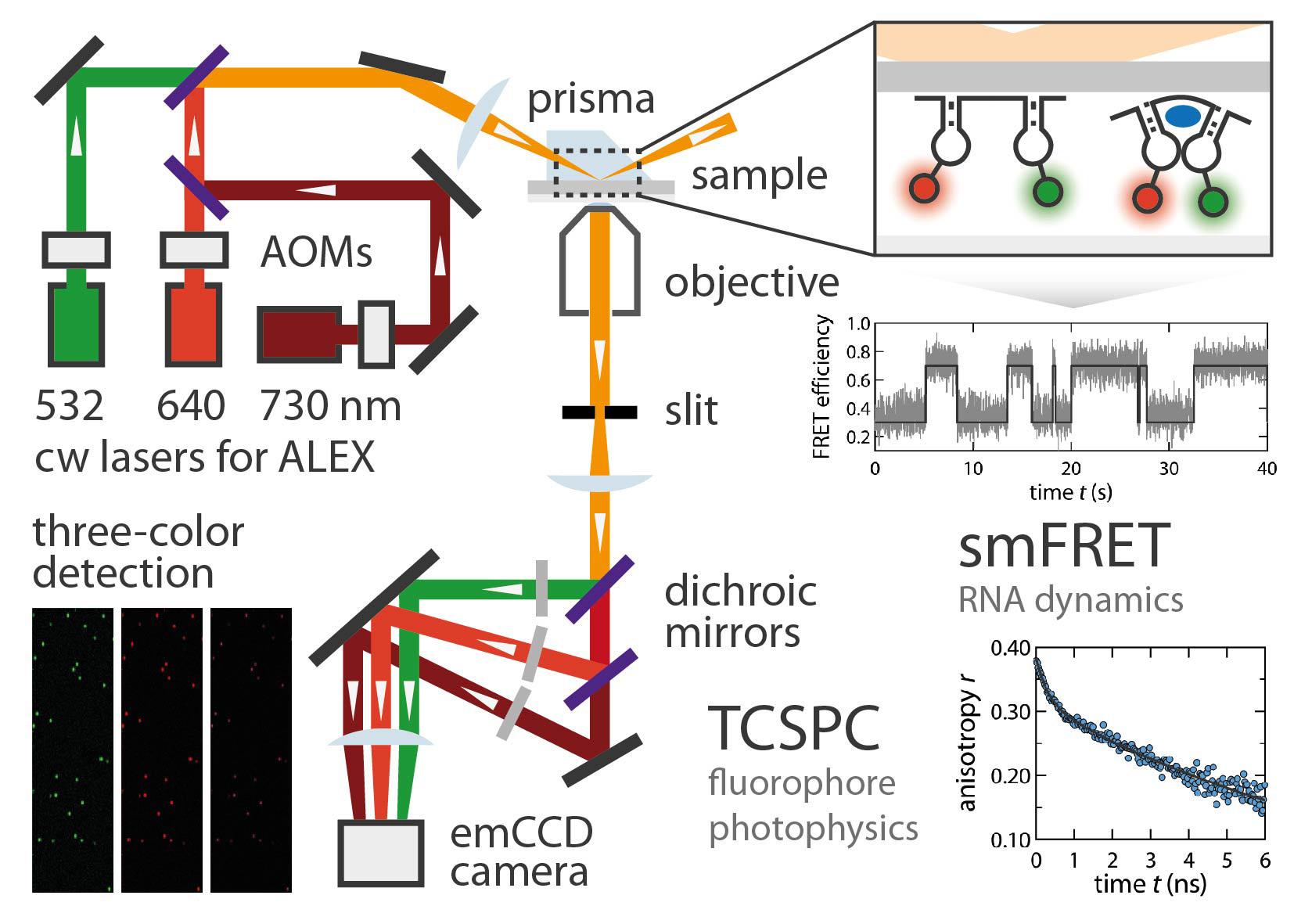 laboratory 8 spectroscopy Laboratory sample analysis (i), raman spectroscopy as a rapid, non- destructive  8 introduction statement of the problem the analysis of  clandestine.