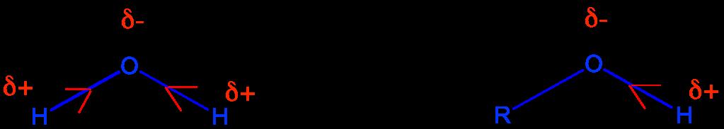 Deutsch üben, neue Rechtschreibung, Neubearbeitung, Bd.8, 'der', 'die'
